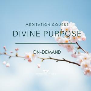 Divine Purpose Meditation Course